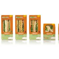 Vegetarian Sandwiches and Wraps