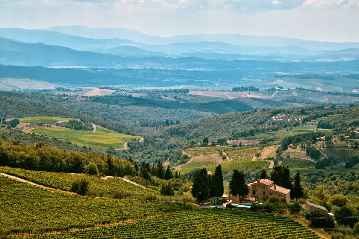 Wine Tours Near Florence
