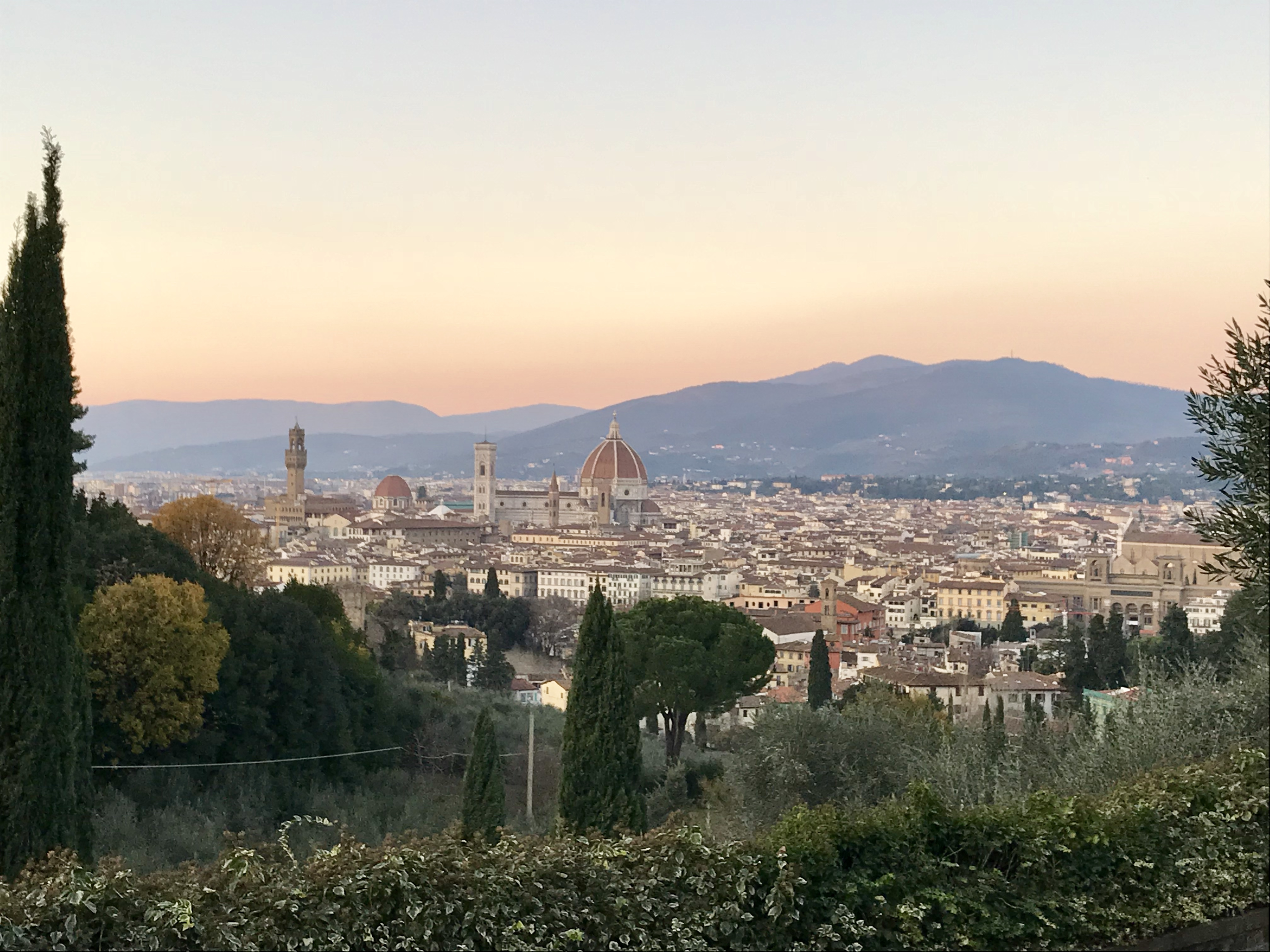 How To Find What To Do In Florence Online 0