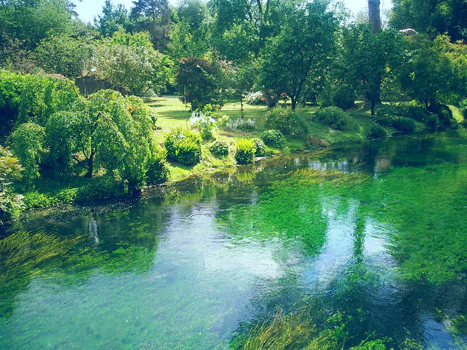 Best Day Trip from Rome: Ninfa Garden 2