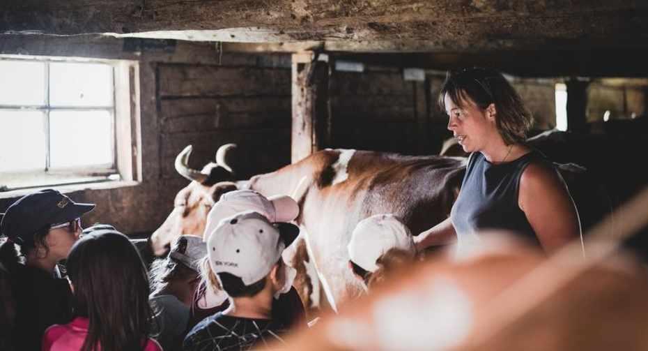 Life on the farm 1.jpg