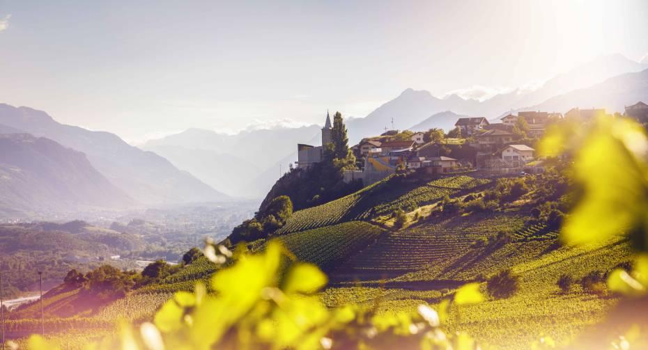 2015_Oenotourisme_Varen_1_©Valais Wallis Promotion - Frederic Huber.jpg