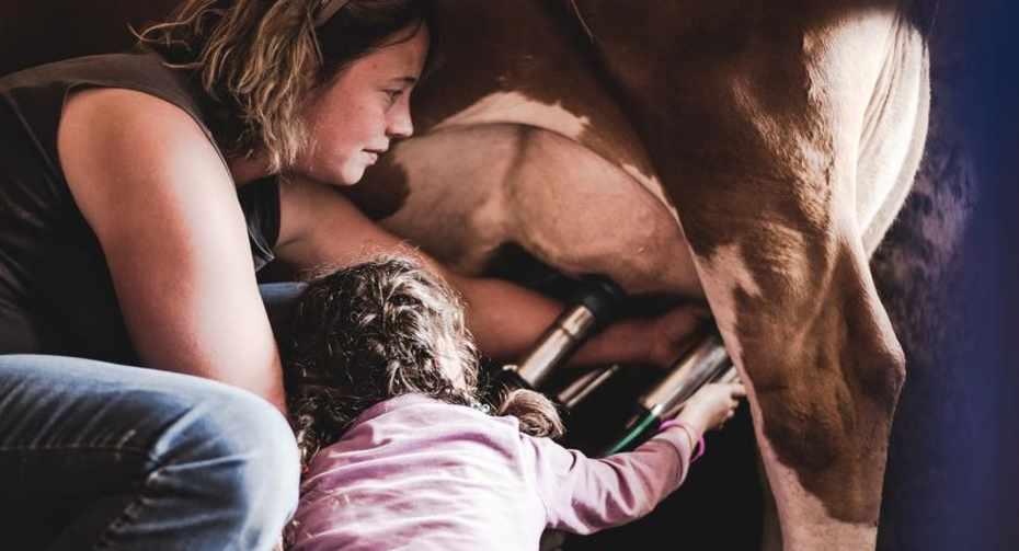 Life on the farm 2.jpg