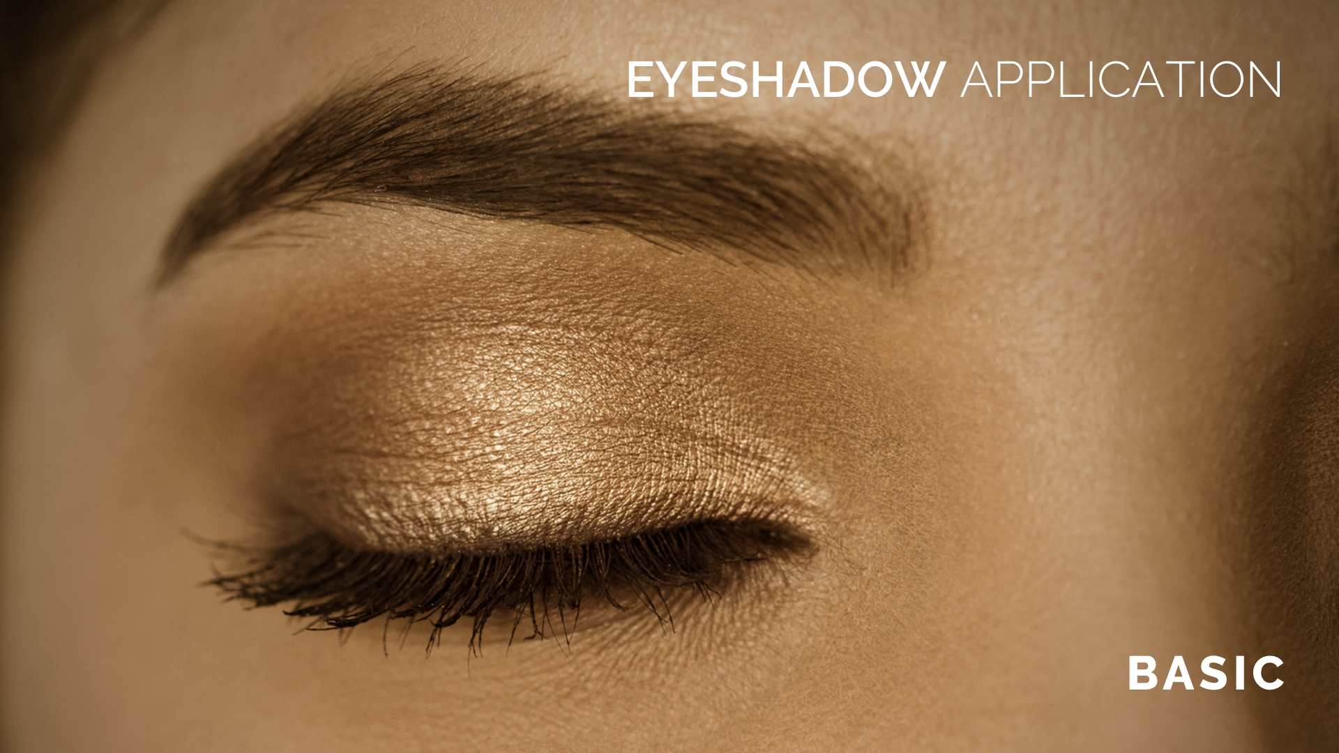 Basic Eyeshadow Application