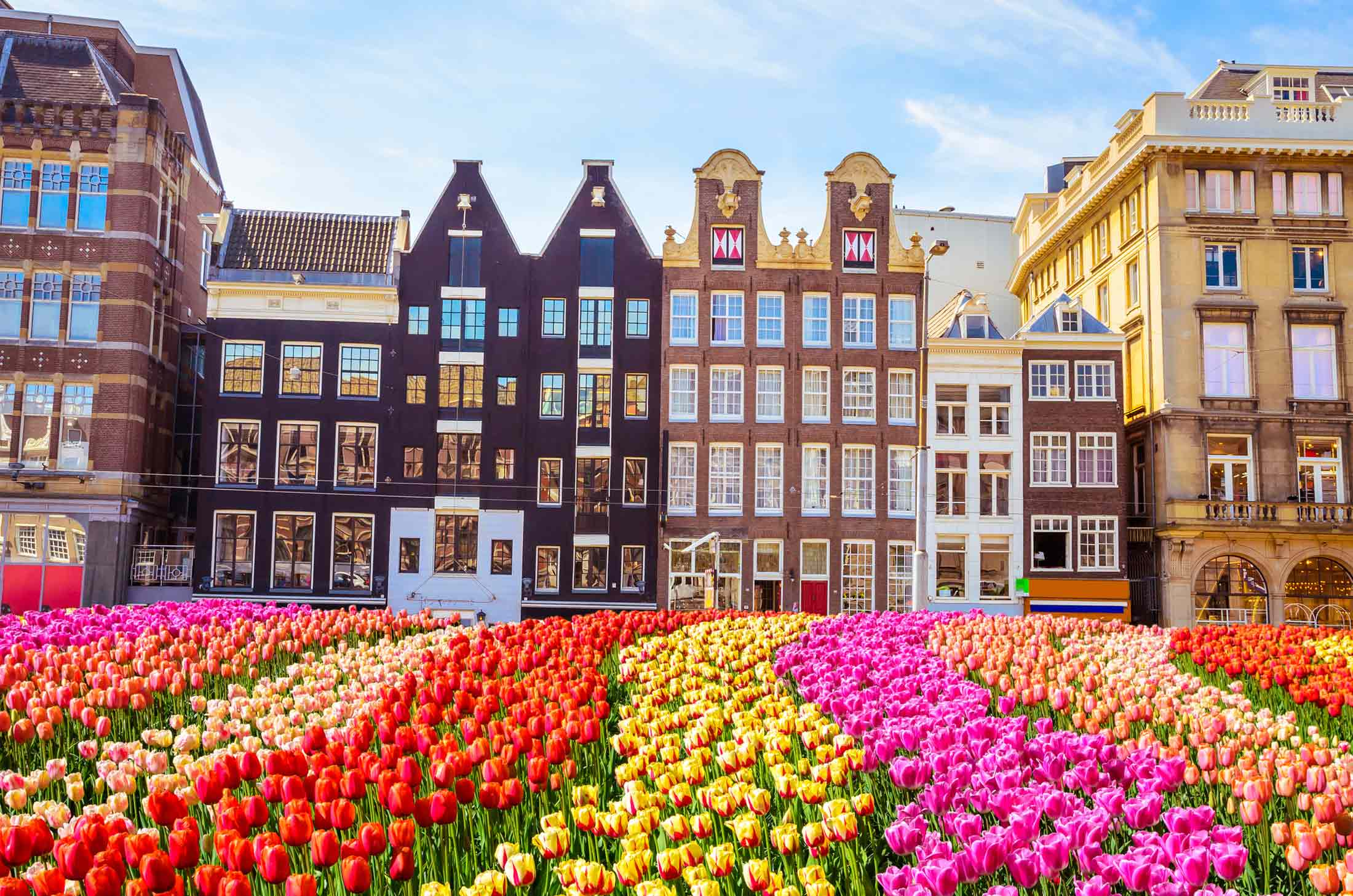 Amsterdam tips for backpackers