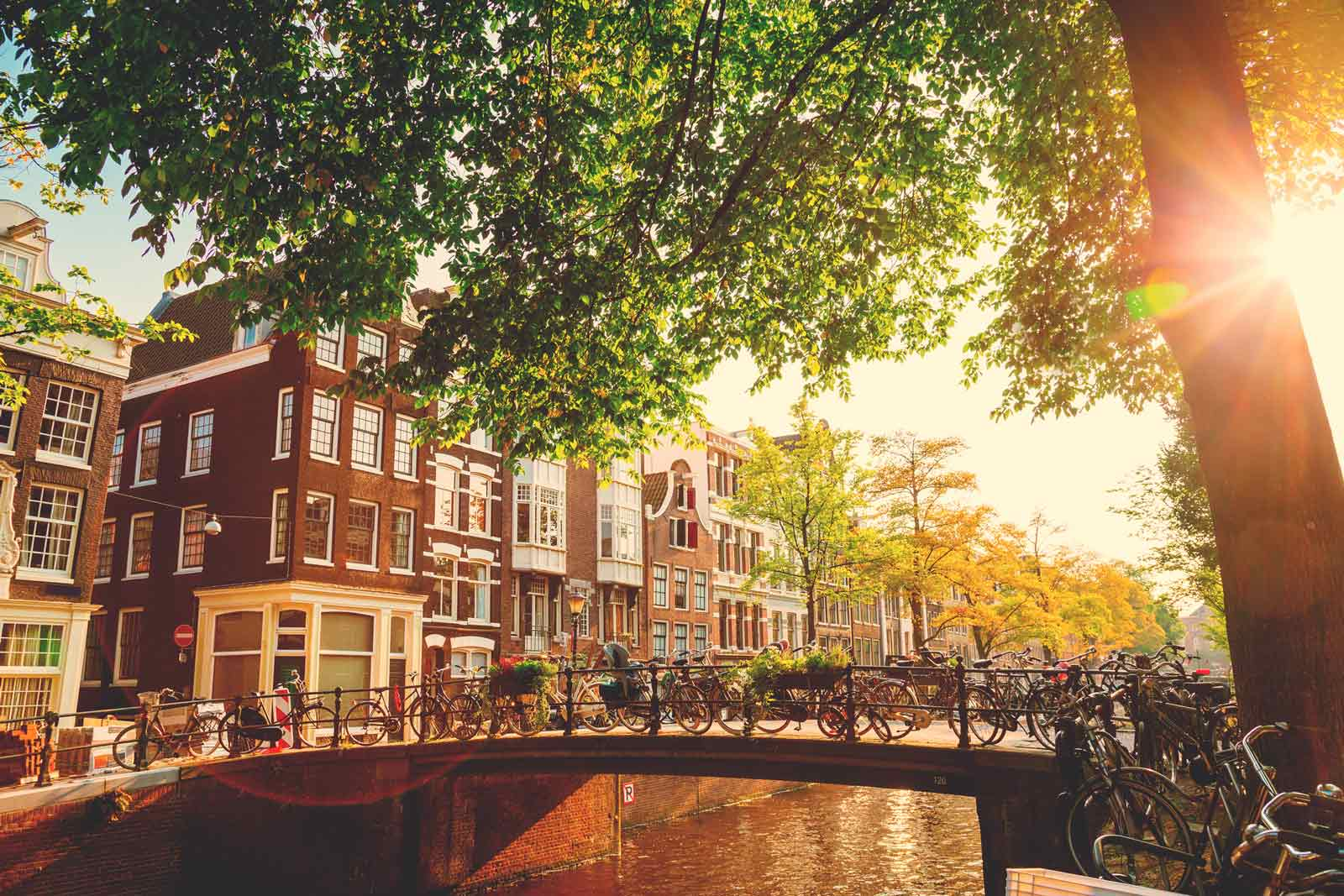 Reasons-to-visit-Amsterdam