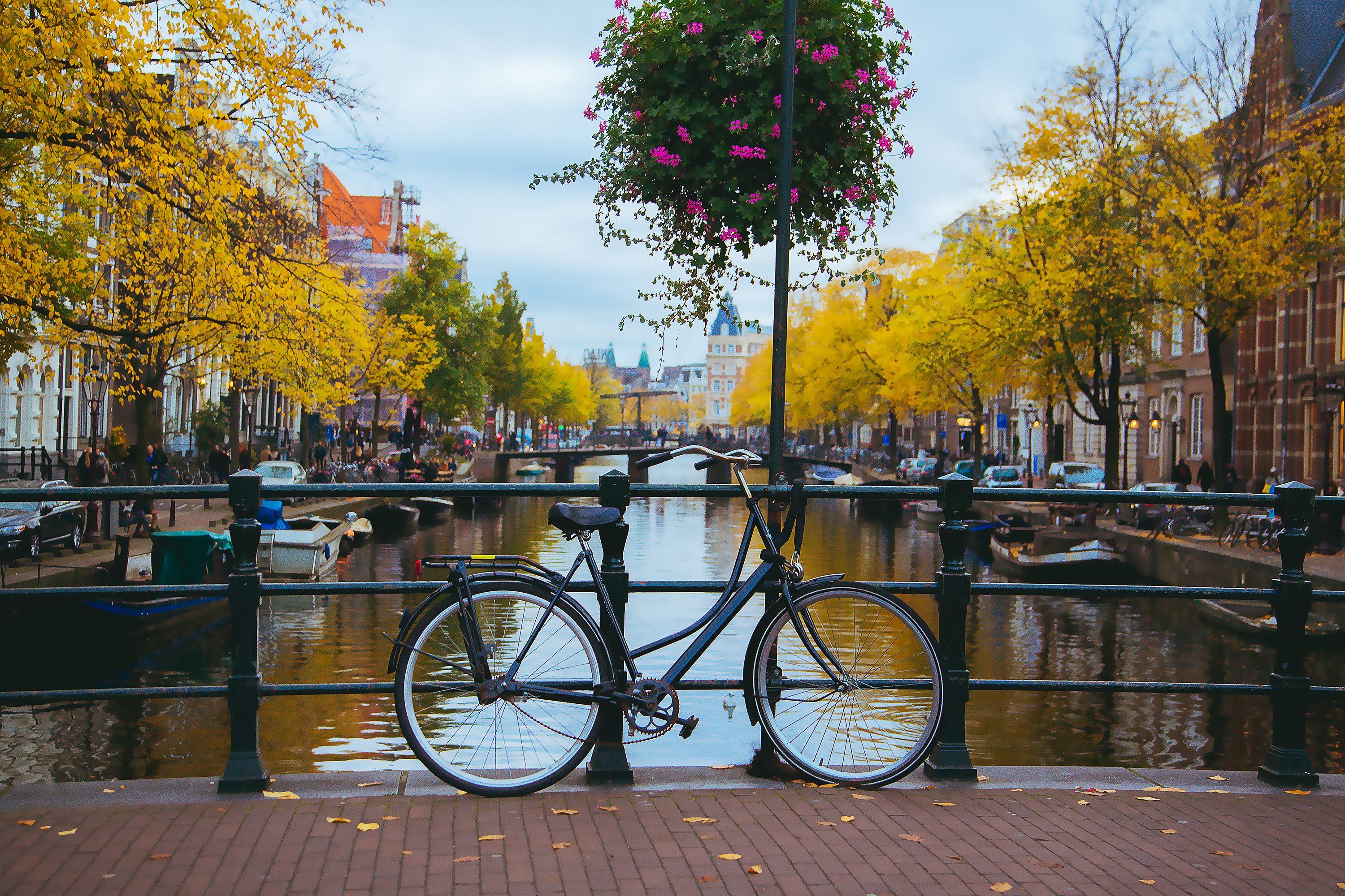 Best Things to do in Amsterdam in September