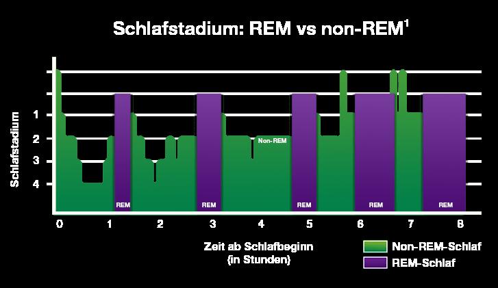 Schlafstadium: REM vs non REM