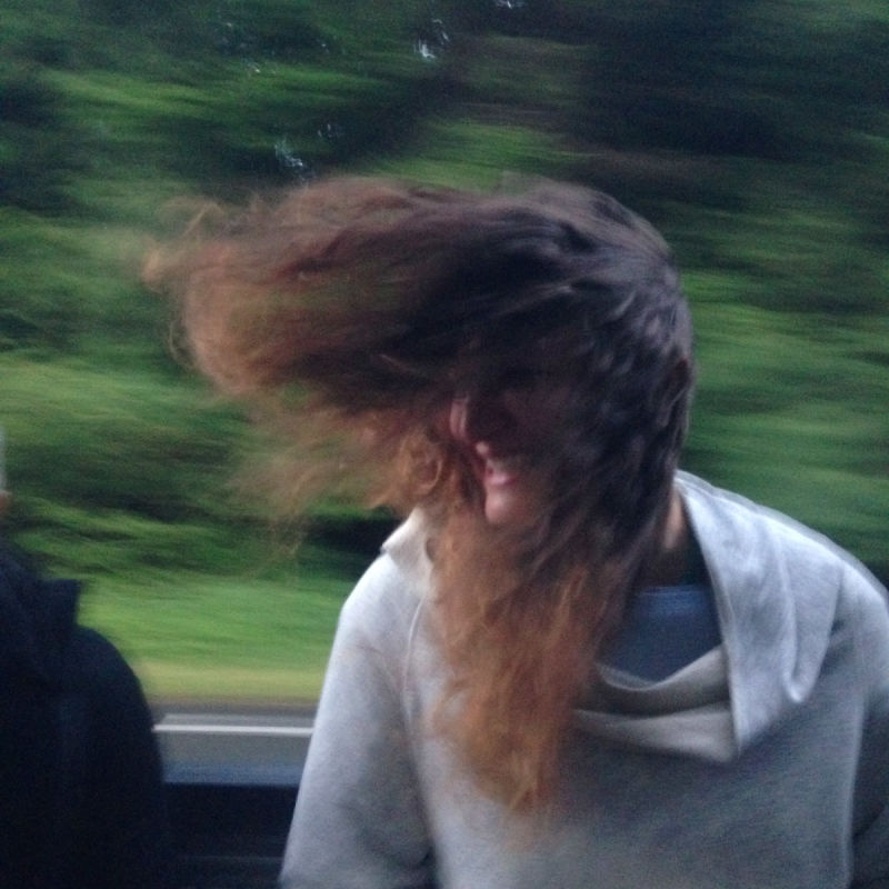 Windblown in the back of a truck