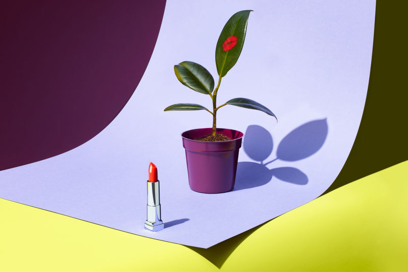 Red lipstick and plant