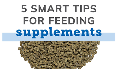 5 Smart Tips for Feeding Supplements