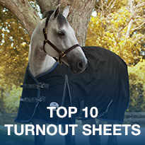 Top 10 Turnout Sheets
