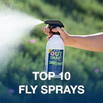 Top 10 Fly Sprays