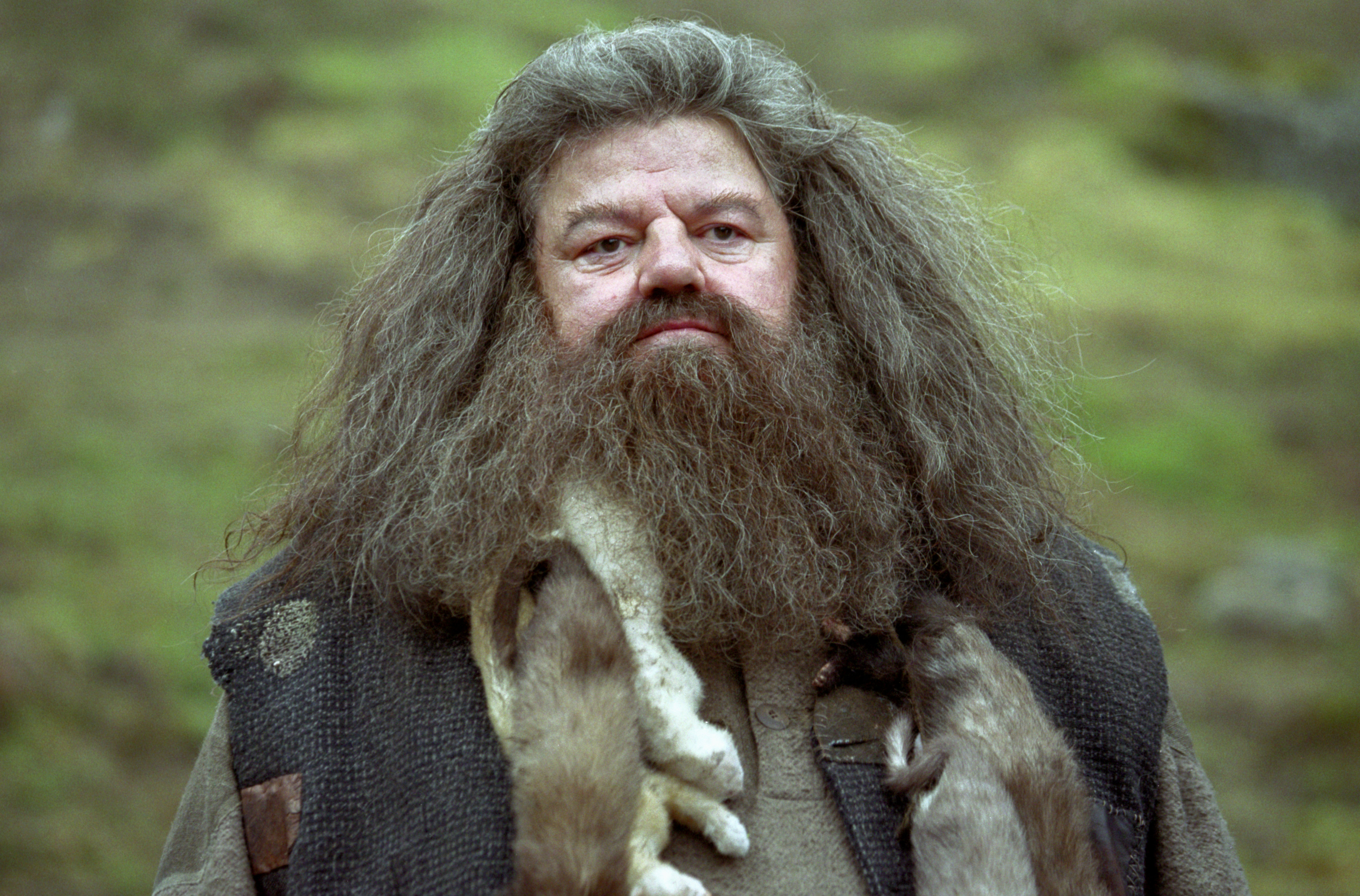 Why We Wish We D Seen More Of Hagrid And Madame Maxime
