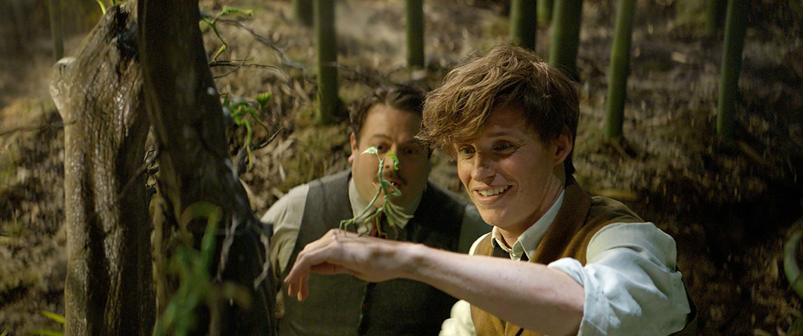 Newt and his Bowtrucles