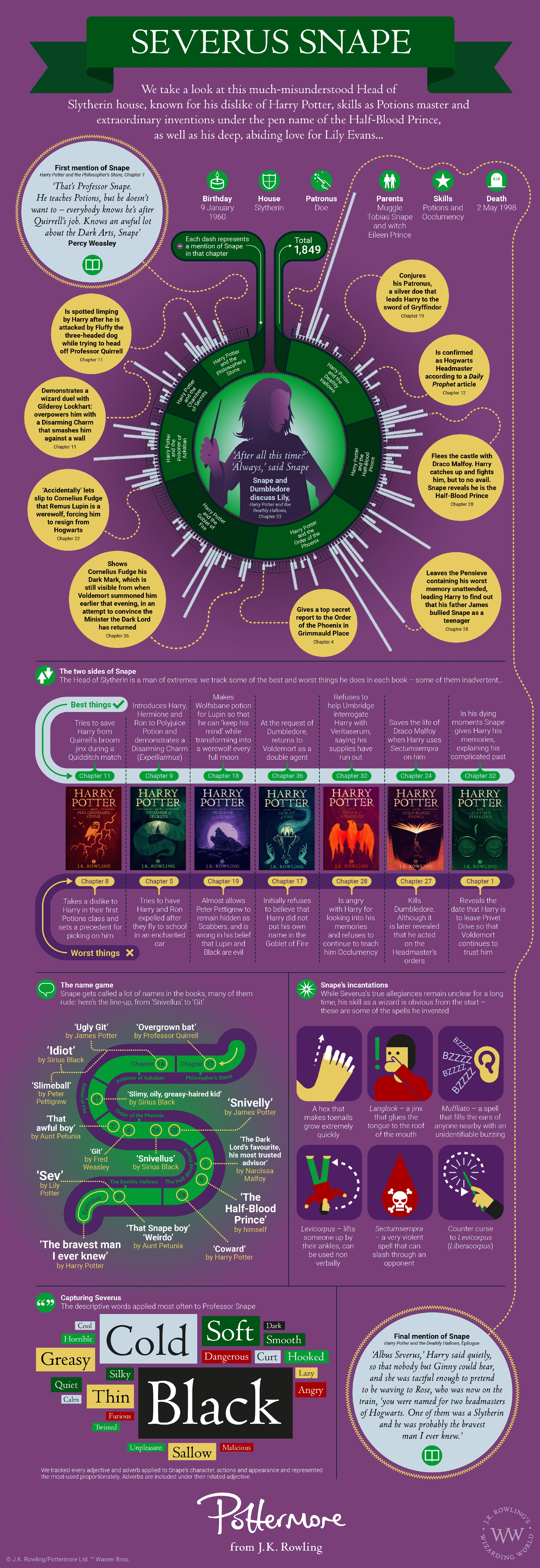 All About Severus Snape Wizarding World