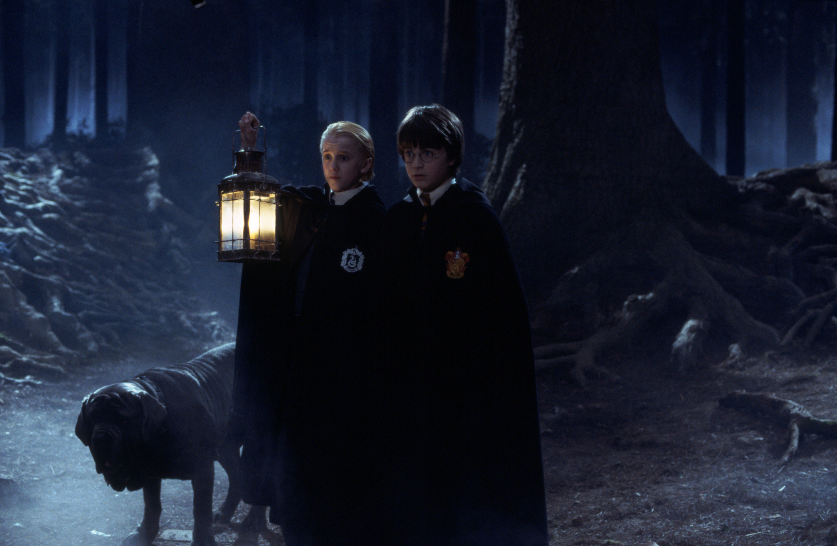 WB-HP-F1-WEB-HERO-harry-draco-forbidden-forest-fang