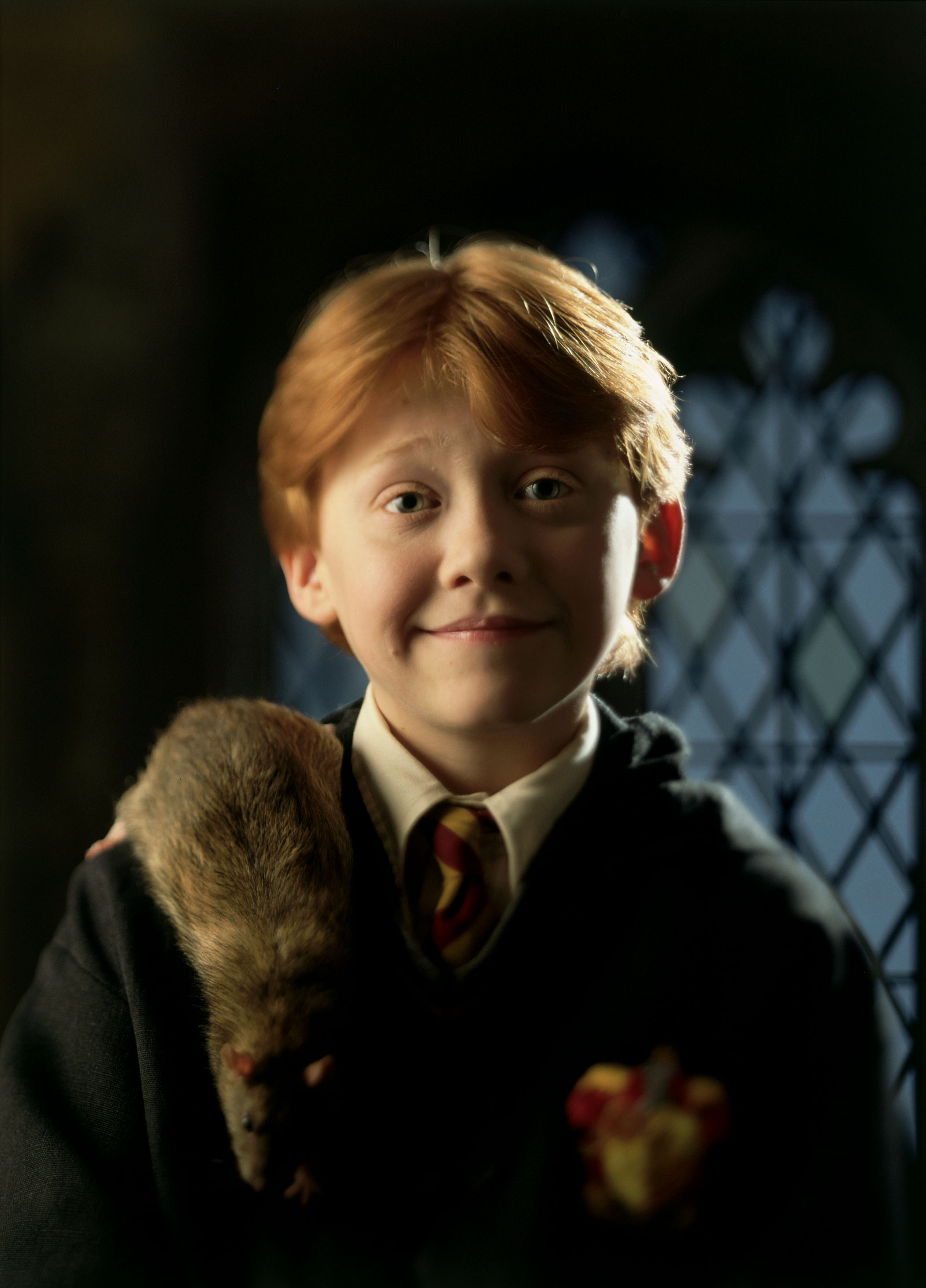 Ron Weasley WB F1 Ron with Scabbers on shoulder 00393692