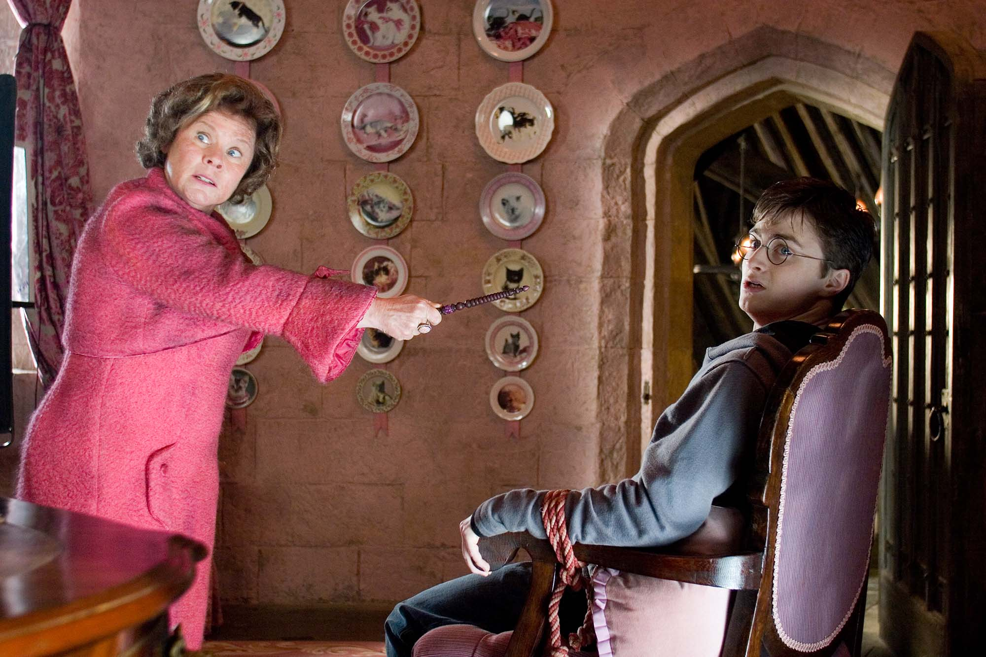 WB-F5-order-of-the-phoenix-umbridge-and-harry-with-cat-plates