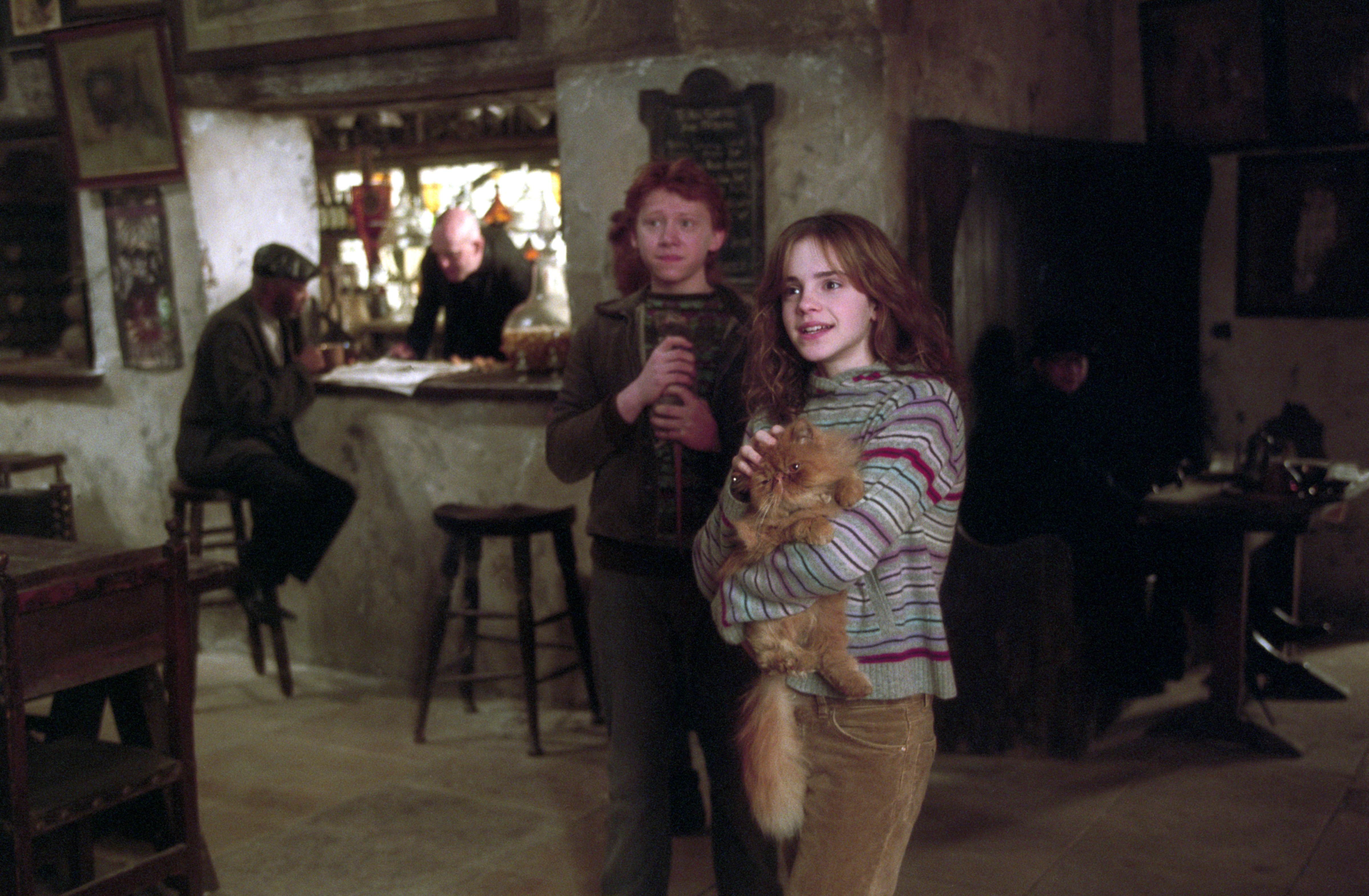 Hermione ron kiss and The Truth