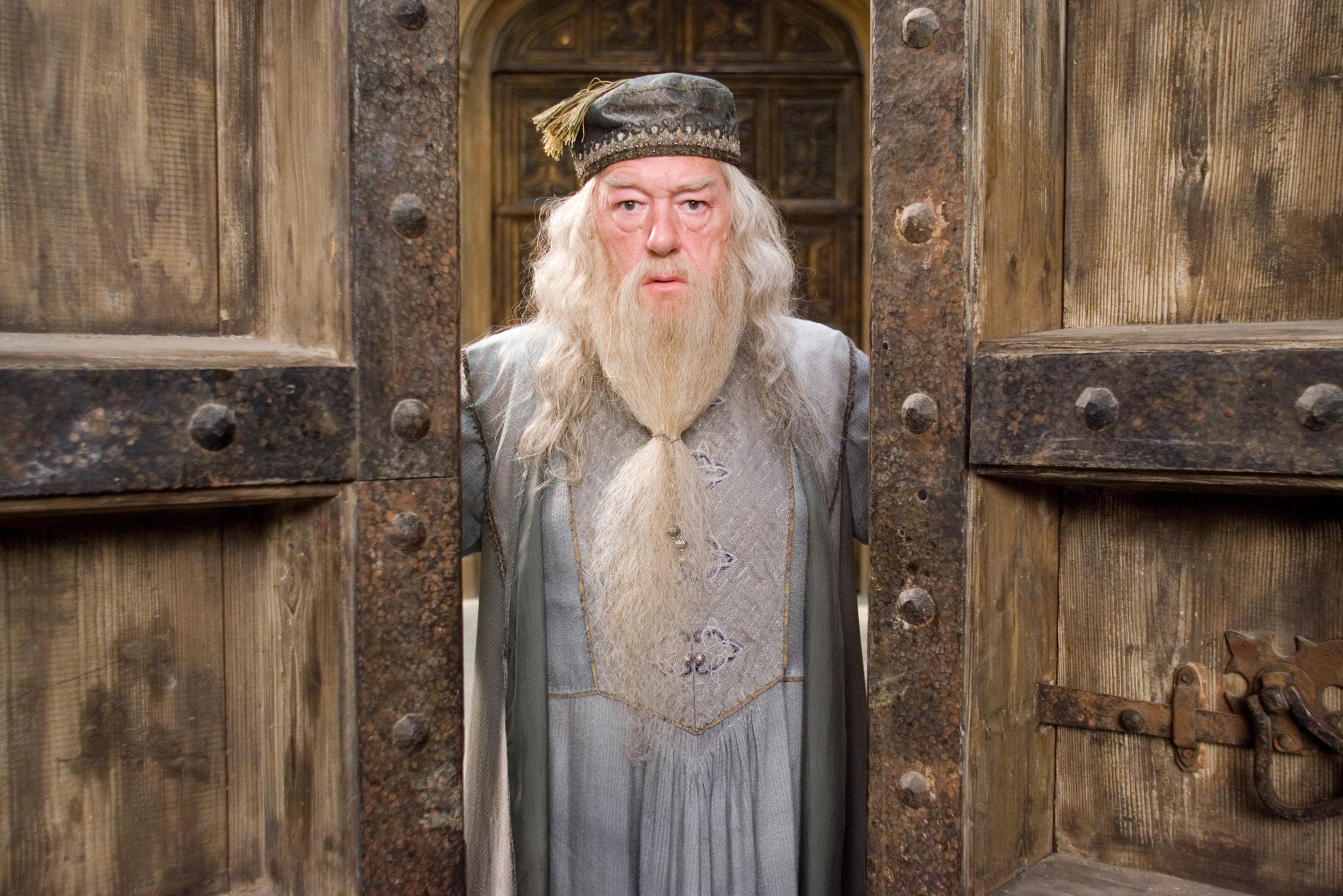 """Image result for albus dumbledore"""""""