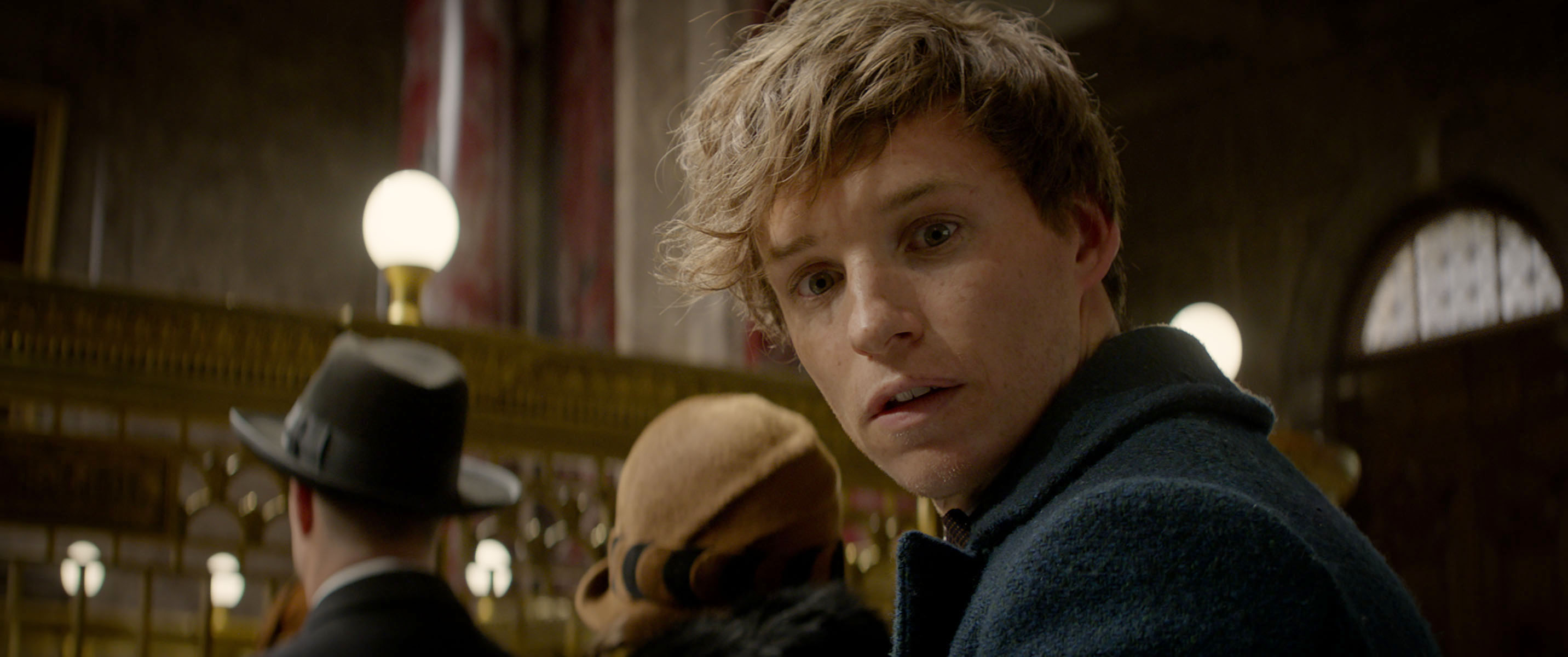 Newt MACUSA Fantastic Beasts trailer hero shot