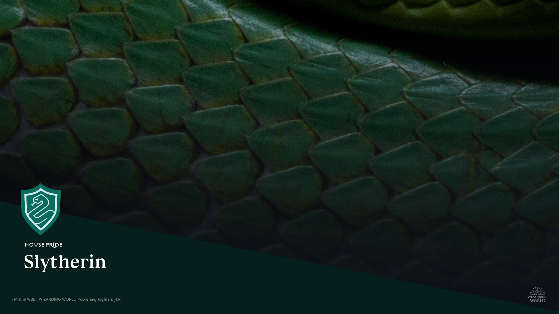web-house-background-video-slytherin