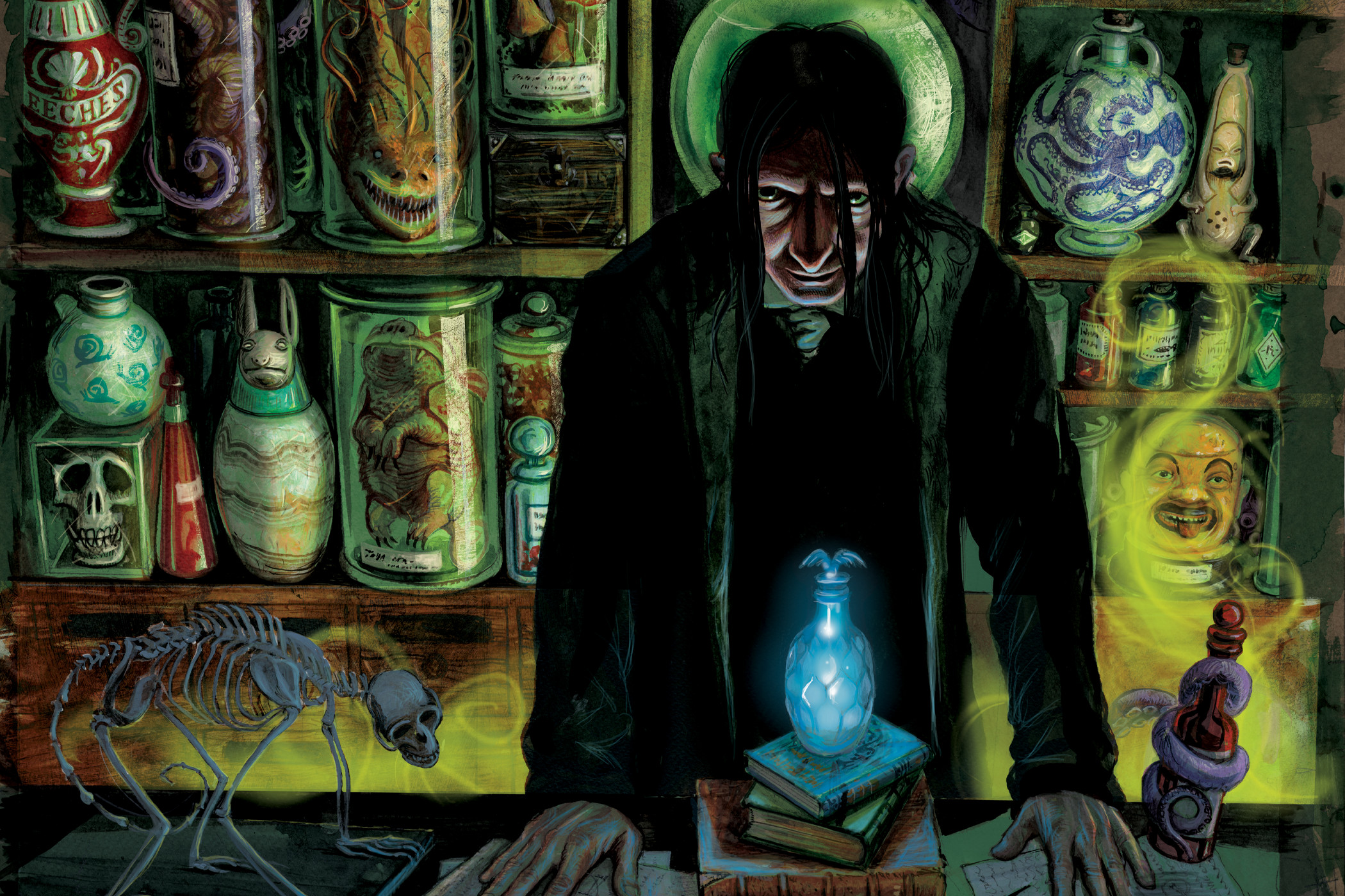 snape-illustration-web-header