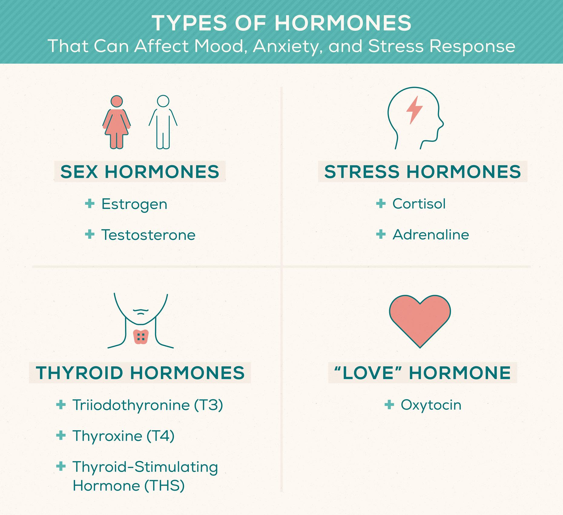 types-of-hormones