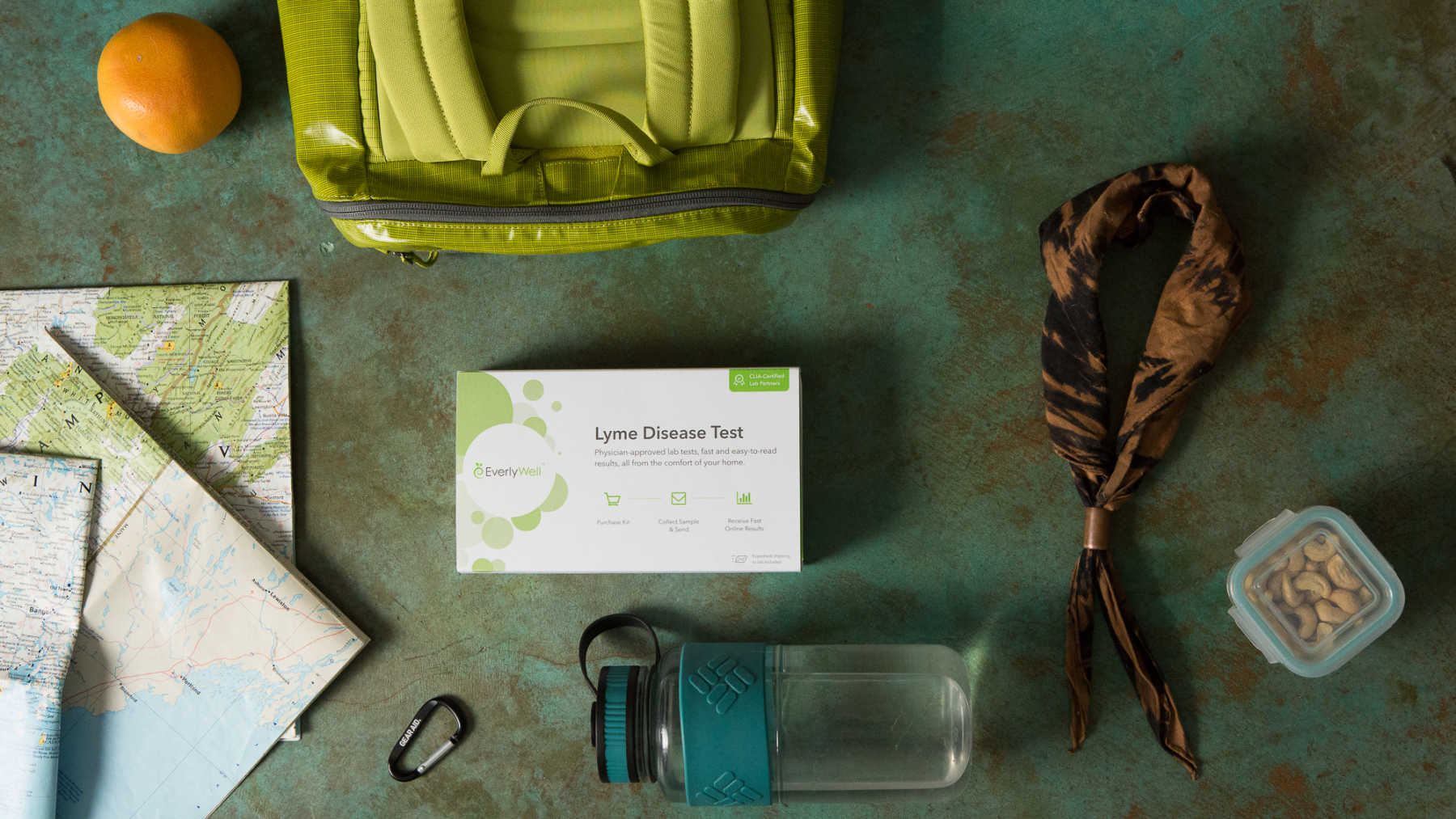 Top Things To Know About EverlyWell's Lyme Disease Test - EverlyWell
