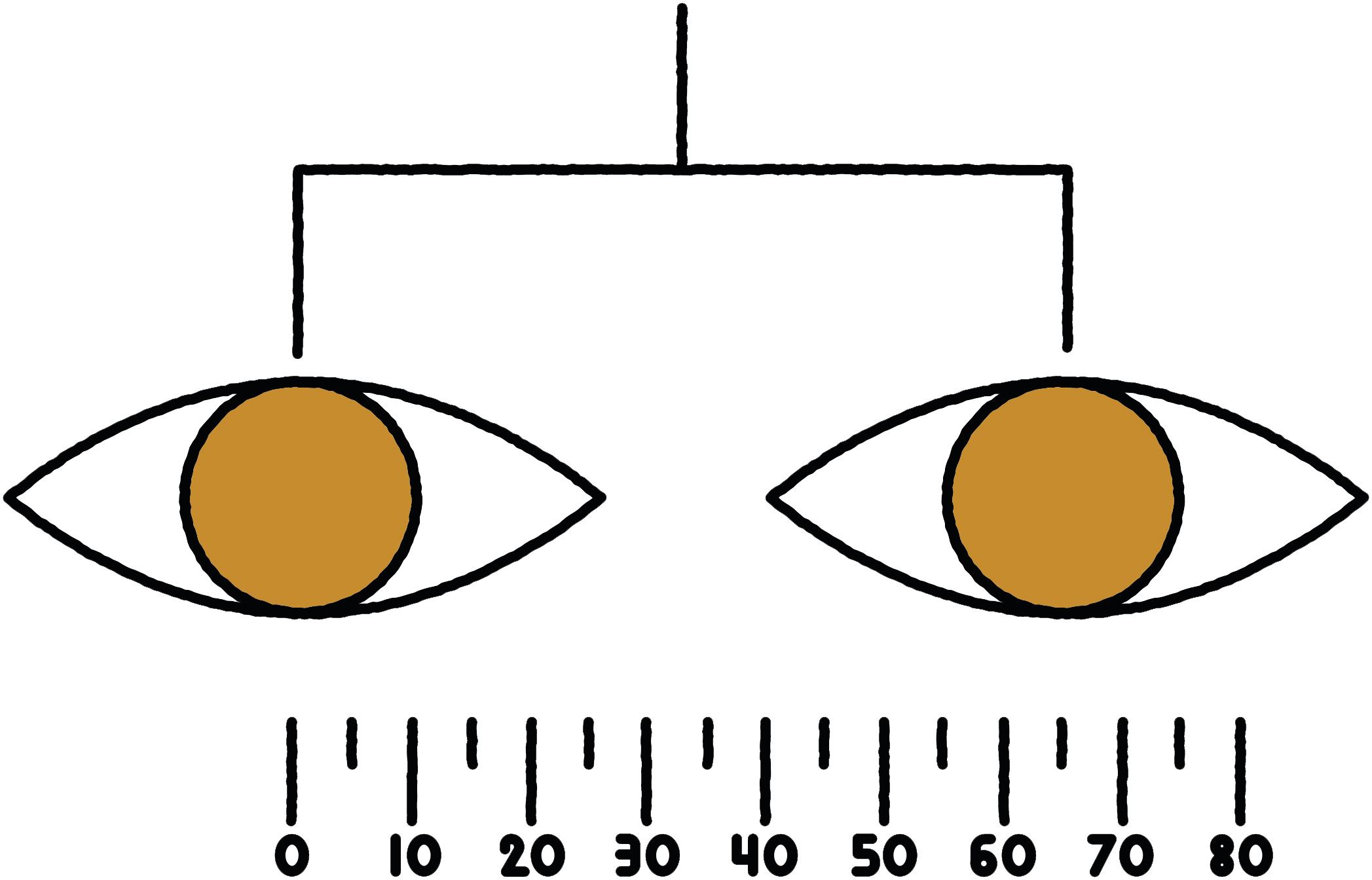 14 prescriptions pupillary distance
