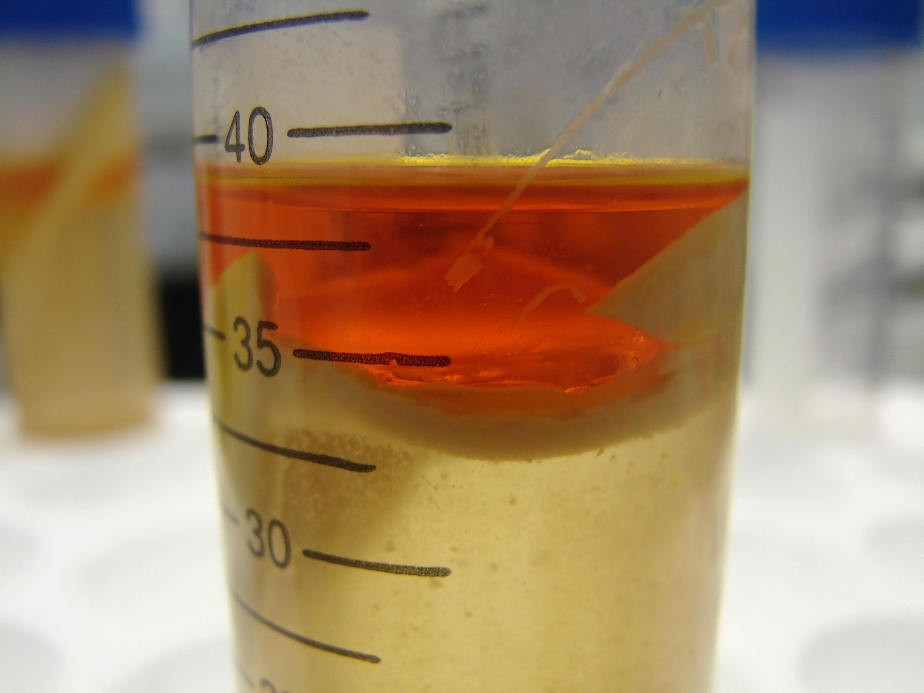 Solventless-wet-extraction (1)