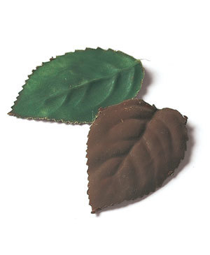 Tips-How-to-Make-Chocolate-Leaves