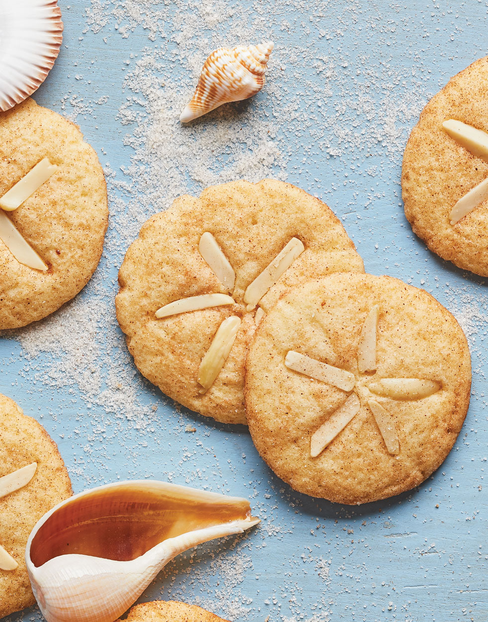 Cinnamon-Sugar Sand Dollar Cookies