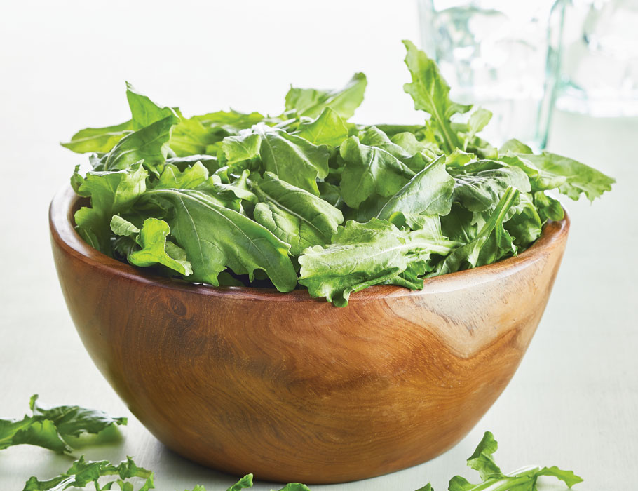 Article-All-About-Arugula-Lead