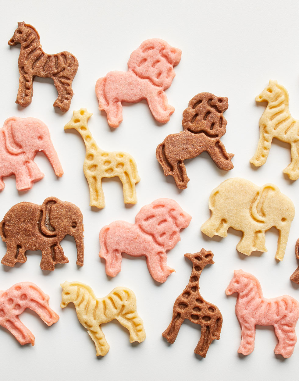 Homemade Animal Cookies