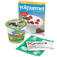 Yogurt starters for making yogurt at home
