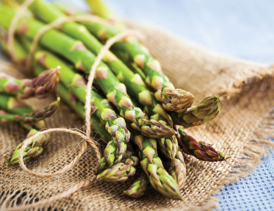 All-About-Asparagus-Lead