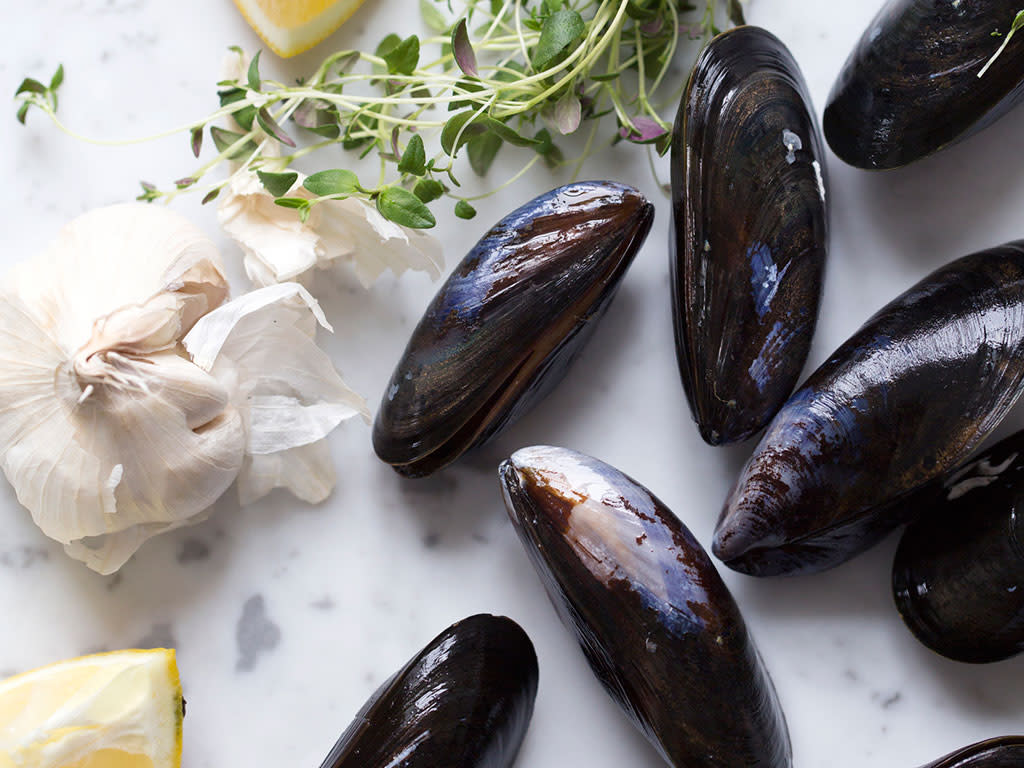 Why and How You Should Eat Mussels | How to Store and Clean Mussels for Cooking