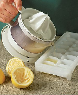 How To Freeze Fresh Lemon Juice