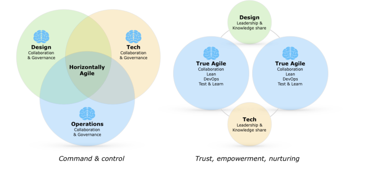 Agile Delivery as Horizontally Agile vs True Agile
