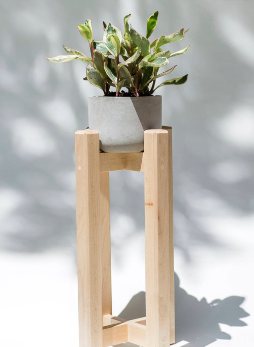 Raised Maple and Concrete Plant Stand