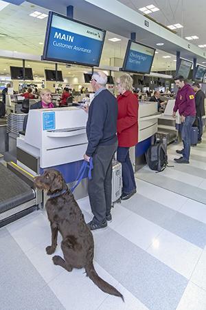 Assistance | Sydney Airport