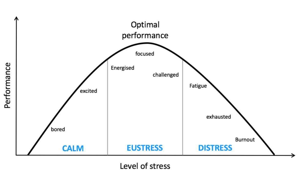 early raises stress levels - 1232×718