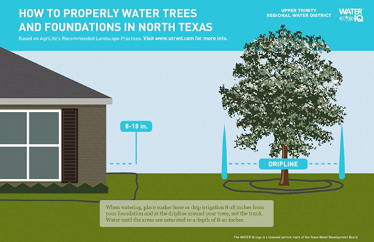 How to Water Trees and Foundations in North Texas