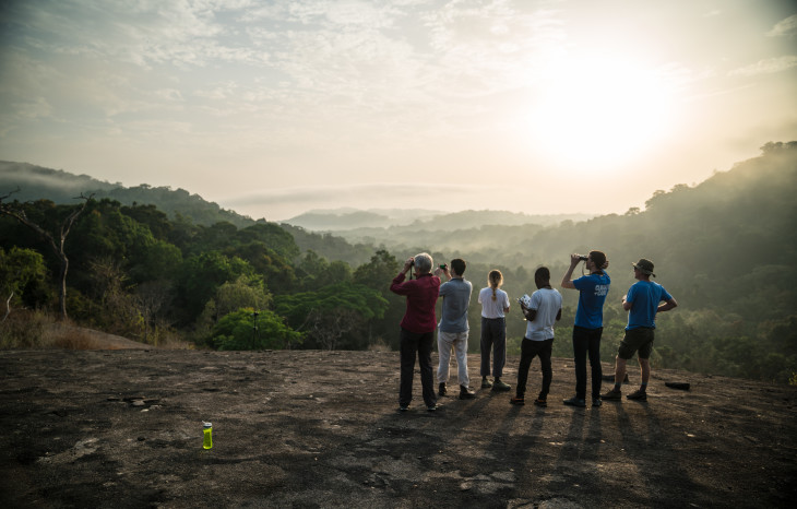 Some of the Bulb team looking out over the misty Gola rainforest