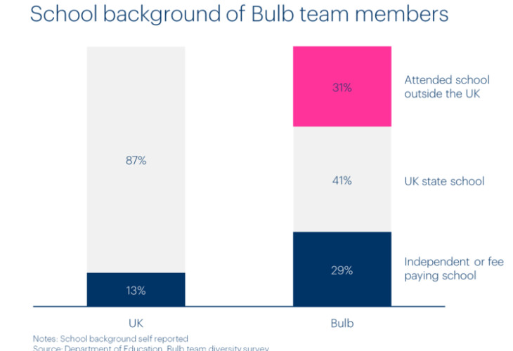 Chart of Bulb team members by school background.