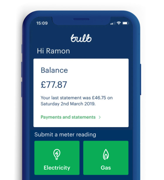 Photo of the Bulb app in action