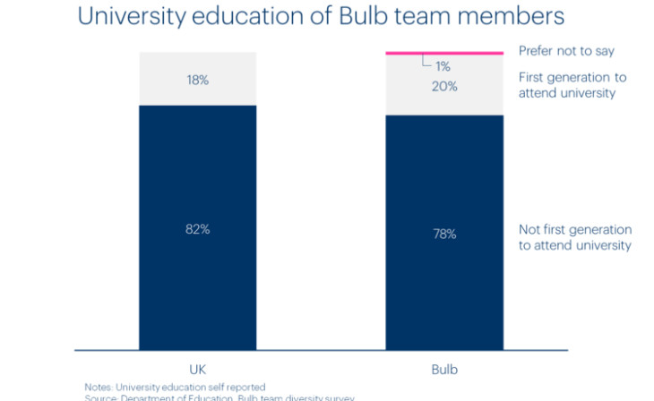 Chart of Bulb team members by university education