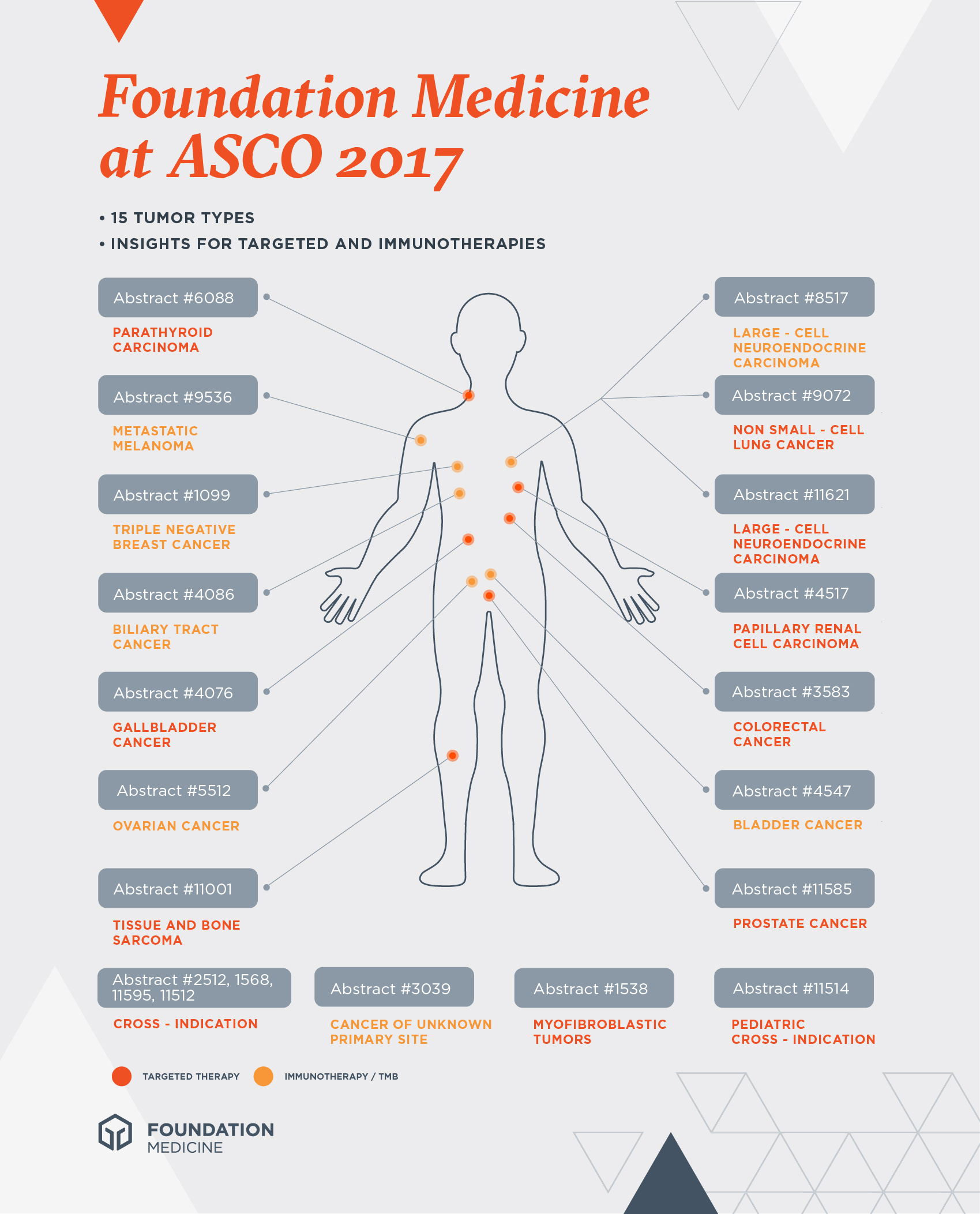 FMI ASCO Infographic 2017 R4-01